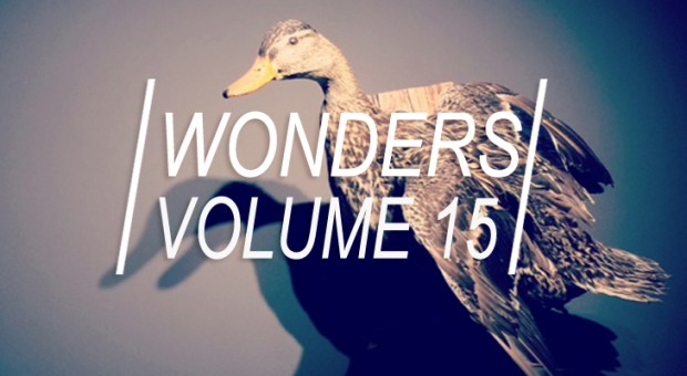 WONDERS_15title