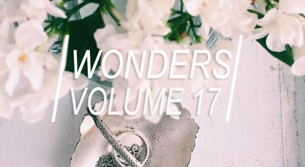 WONDERS_17title