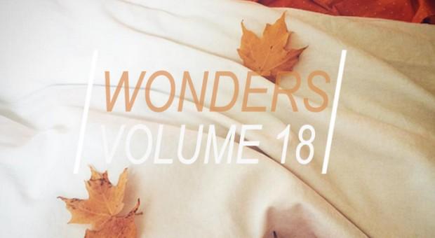 WONDERS_18TITLE