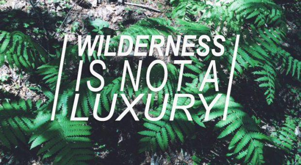 Wilderness_title