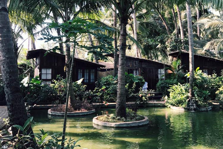 Ciarian's - Palolem, Goa, India